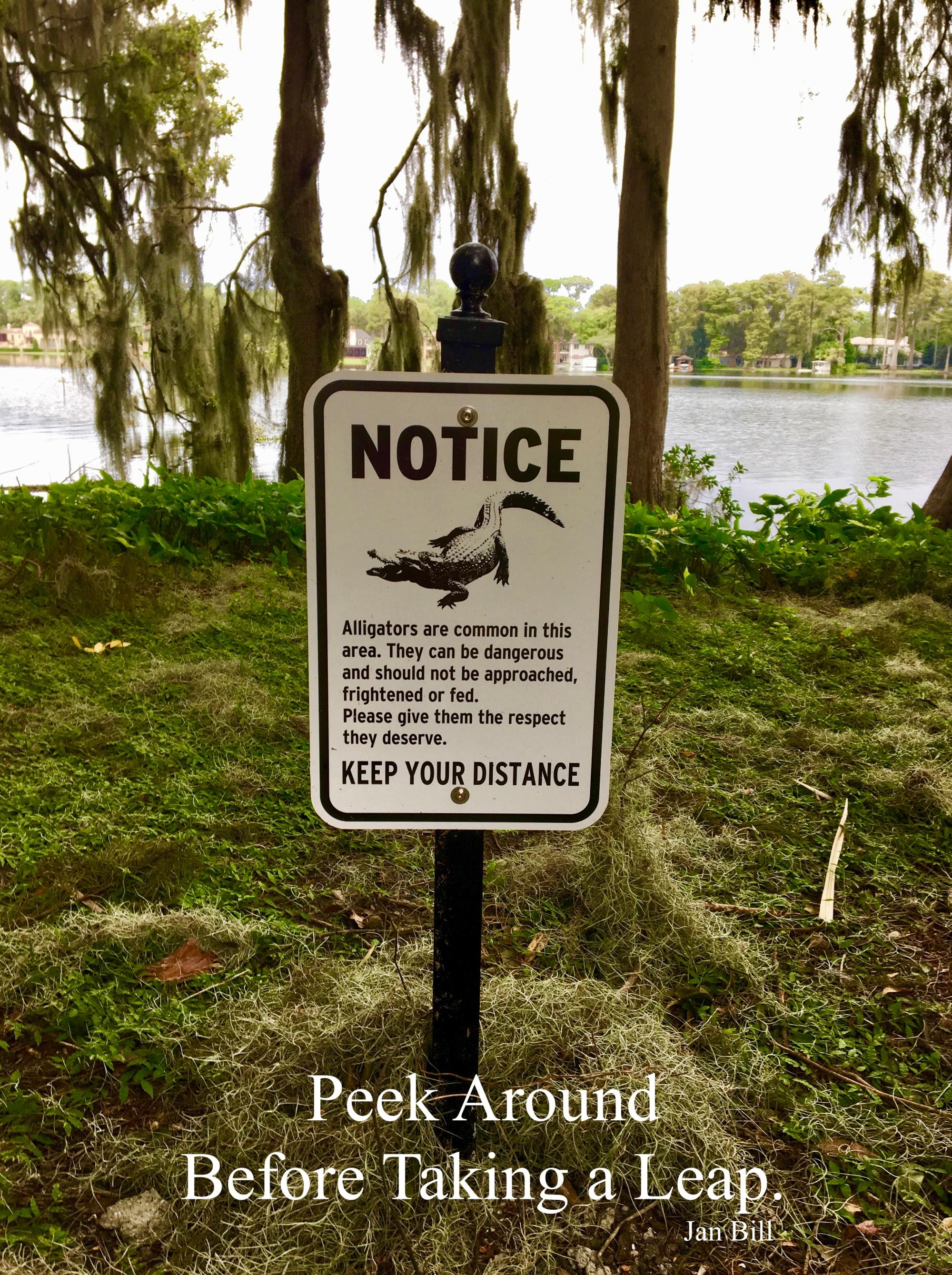 image of sign warning about alligators